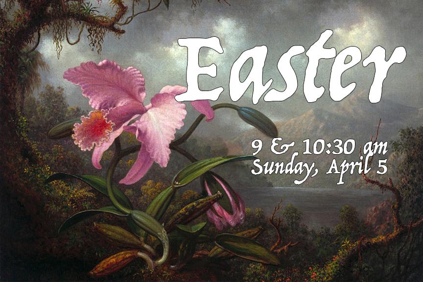Easter 15 Look